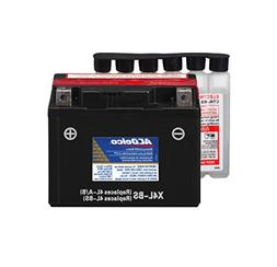 ACDelco ATX4LBS Specialty AGM Powersports JIS 4L-BS Battery